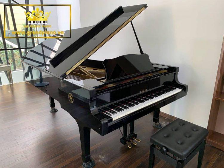 Hải Grand Piano