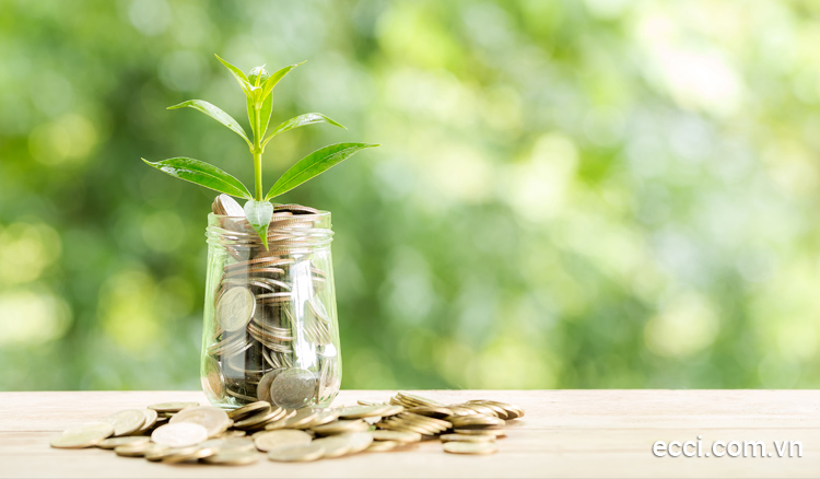 Kinh nghiệm vay tiền trả góp: khoản vay cao, lãi suất thấp!
